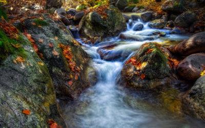 Autumn river 2